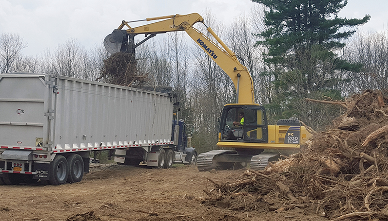 Rancourt Land Clearing of New York and Connecticut providing professional Grubbing & Stump Removal Services