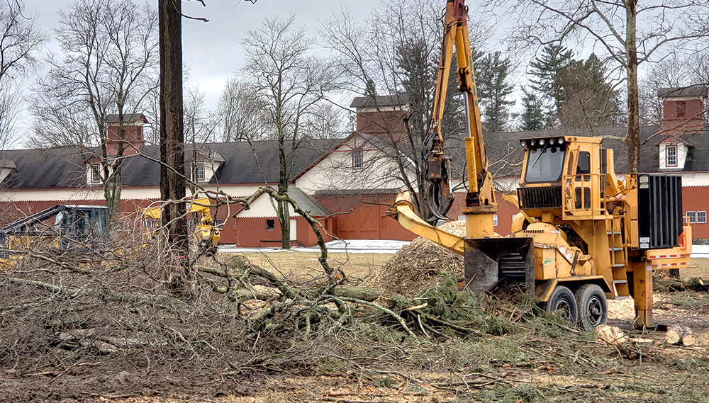 Rancourt Land Clearing Tree Chipper Services in New York and Connecticut Area